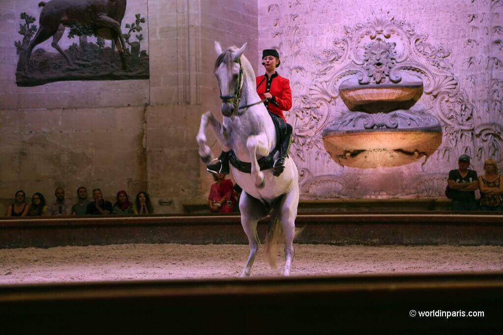 Horse Show Chantilly