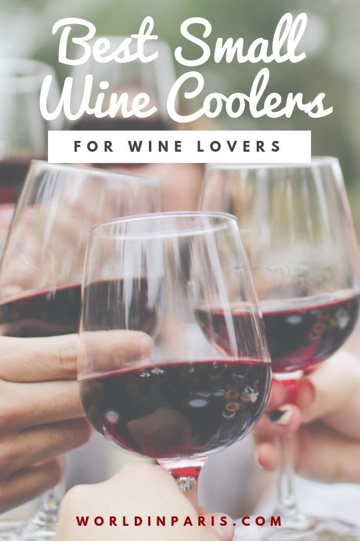 Best Small Wine Coolers, Small Wine Coolers Review, Best Small Wine Coolers Brands, best countertop wine cooler, Unique Gifts for Wine Lovers, Wine related gifts, Wine Storage
