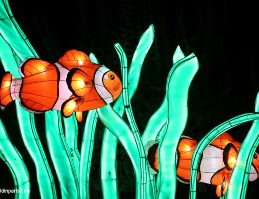 Festival des Lumieres Paris - red fish