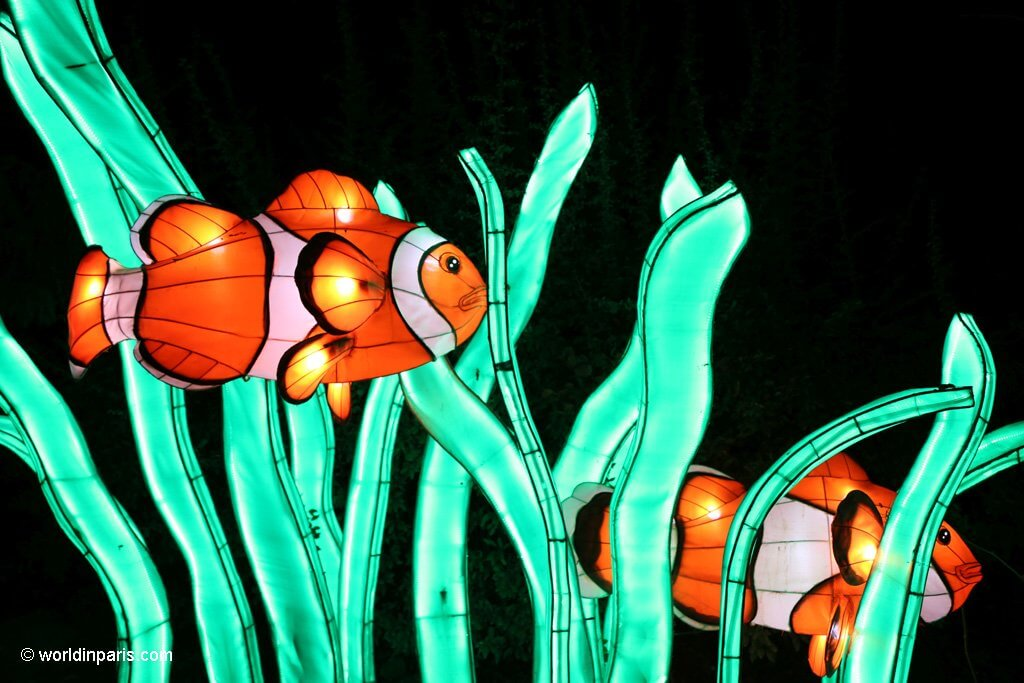 Festival des Lumieres Paris - red fish
