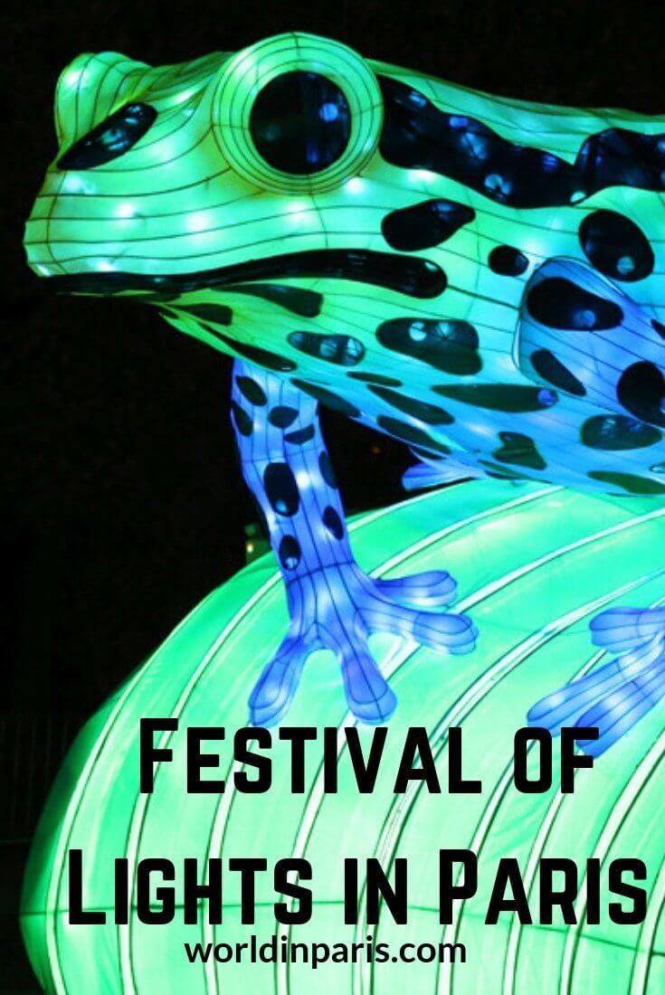 festival pet kopen