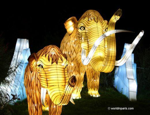 Festival des Lumières Paris - Mammoth