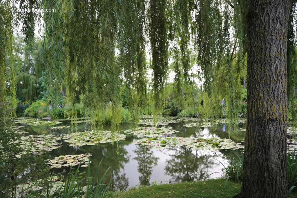 Giverny water pond