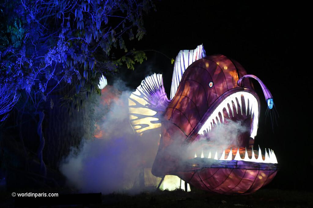 Paris Festival of Lights 2019