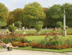 summer in Luxembourg Gardens