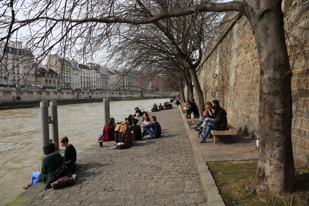Seine's Banks Paris